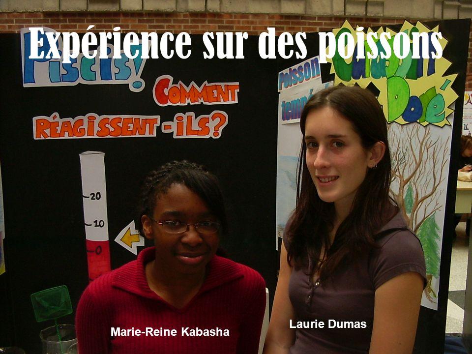 Expérience sur des poissons Marie-Reine Kabasha Laurie Dumas