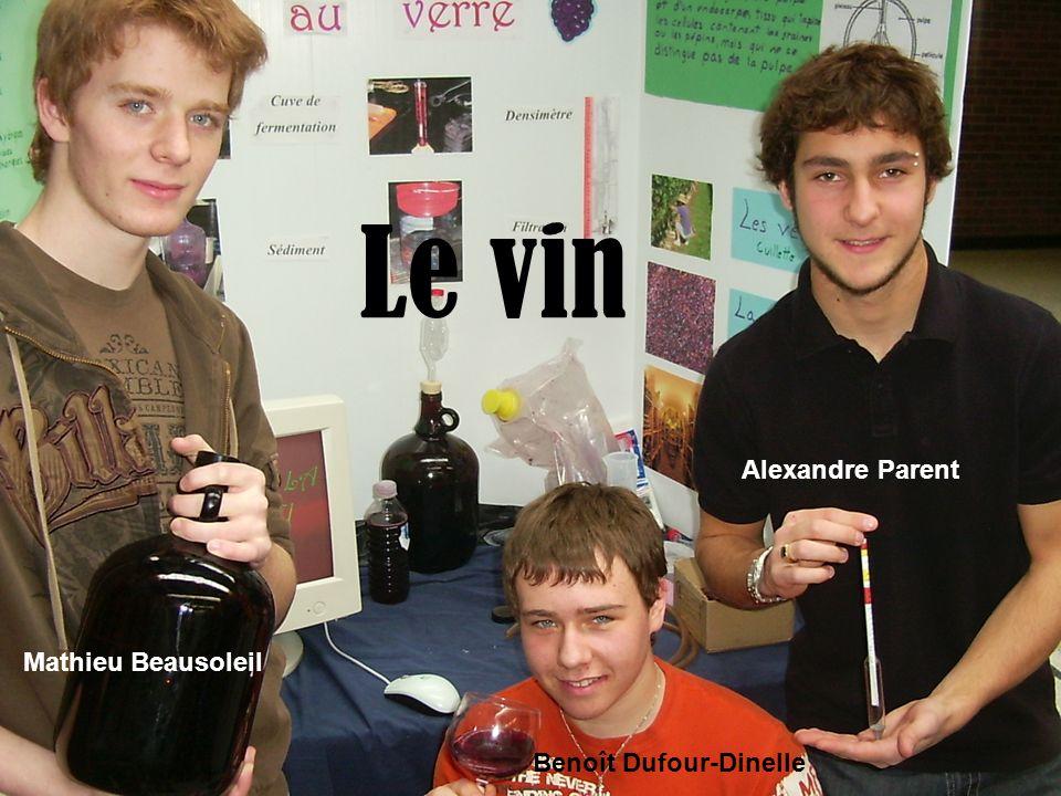 Le vin Mathieu Beausoleil Benoît Dufour-Dinelle Alexandre Parent
