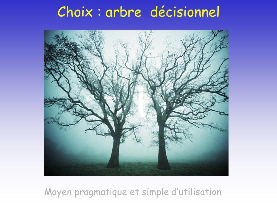Choix : arbre décisionnel Moyen pragmatique et simple dutilisation