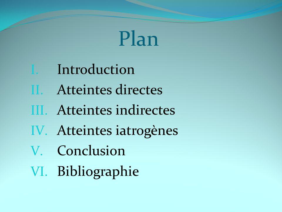 Plan I.Introduction II. Atteintes directes III. Atteintes indirectes IV.