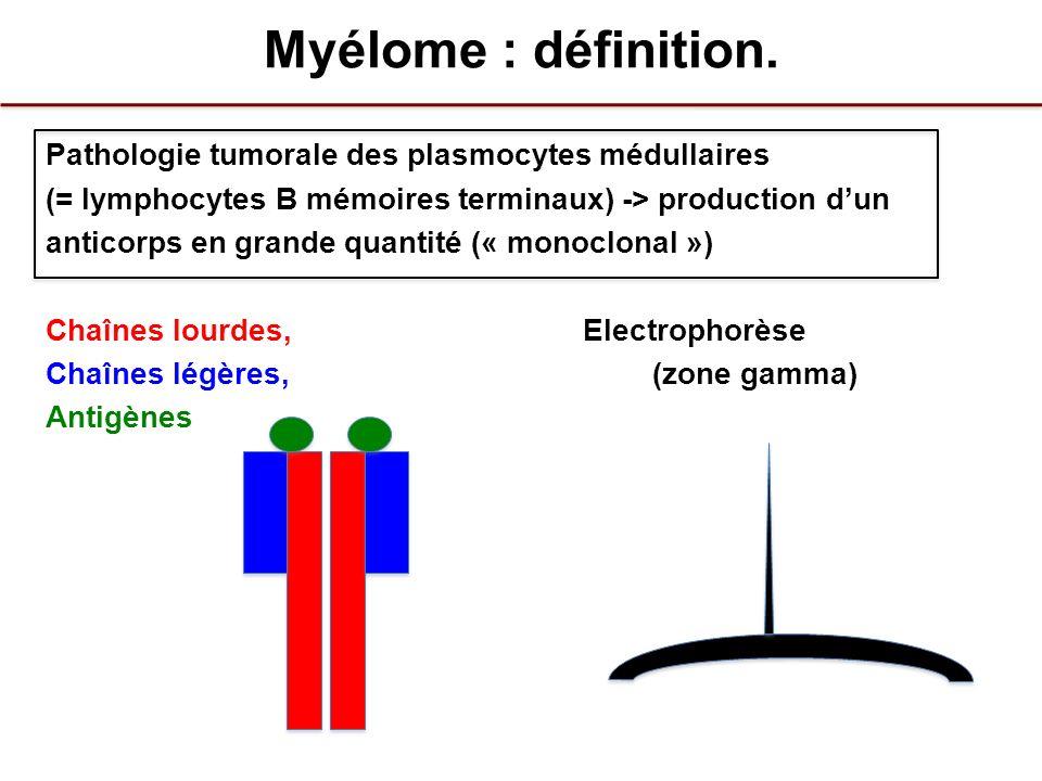 Myélome : définition. Pathologie tumorale des plasmocytes médullaires (= lymphocytes B mémoires terminaux) -> production dun anticorps en grande quant