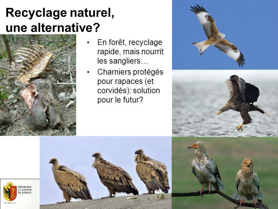 17.05.2014 - Page 14 Département du Territoire Domaine Nature et Paysage Inspection de la Faune et de la Pêche Recyclage naturel, une alternative? En