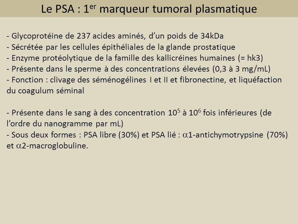 Le PSA : 1 er marqueur tumoral plasmatique - Glycoprotéine de 237 acides aminés, dun poids de 34kDa - Sécrétée par les cellules épithéliales de la gla