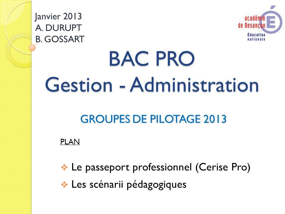 BAC PRO Gestion - Administration GROUPES DE PILOTAGE 2013 Janvier 2013 A. DURUPT B. GOSSART PLAN Le passeport professionnel (Cerise Pro) Les scénarii