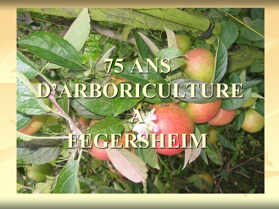 75 ANS DARBORICULTURE A FEGERSHEIM