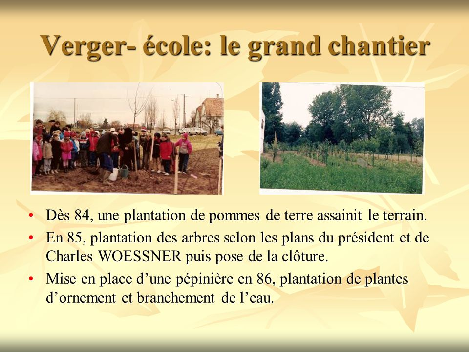 Verger- école: le grand chantier Dès 84, une plantation de pommes de terre assainit le terrain.Dès 84, une plantation de pommes de terre assainit le terrain.