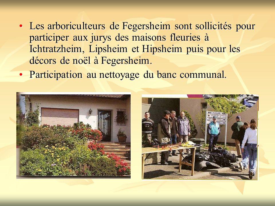 Les arboriculteurs de Fegersheim sont sollicités pour participer aux jurys des maisons fleuries à Ichtratzheim, Lipsheim et Hipsheim puis pour les décors de noël à Fegersheim.Les arboriculteurs de Fegersheim sont sollicités pour participer aux jurys des maisons fleuries à Ichtratzheim, Lipsheim et Hipsheim puis pour les décors de noël à Fegersheim.