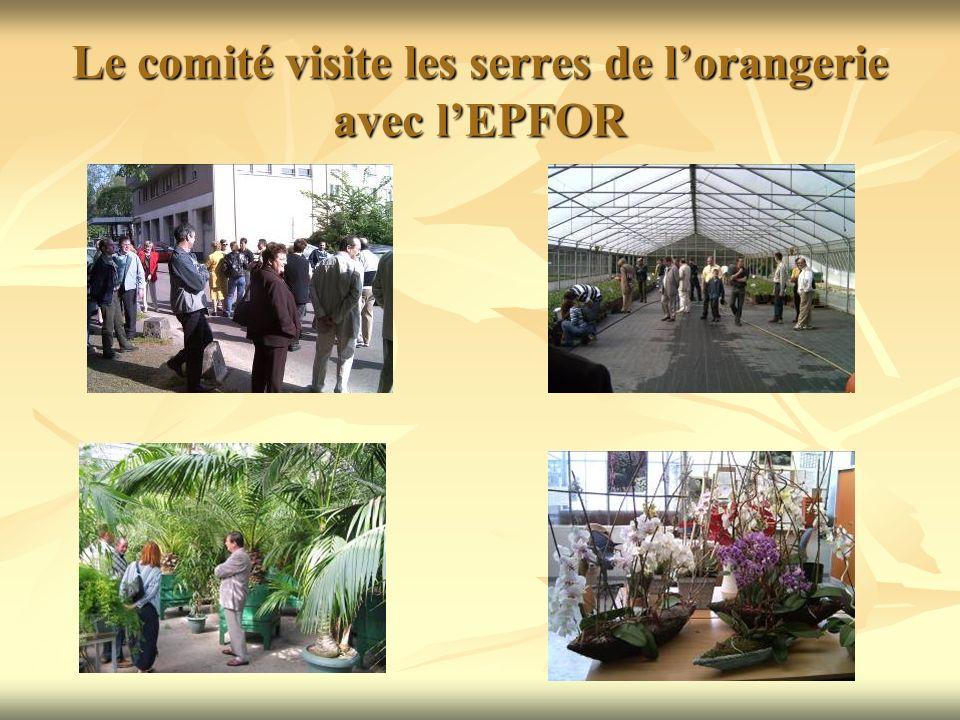 Le comité visite les serres de lorangerie avec lEPFOR