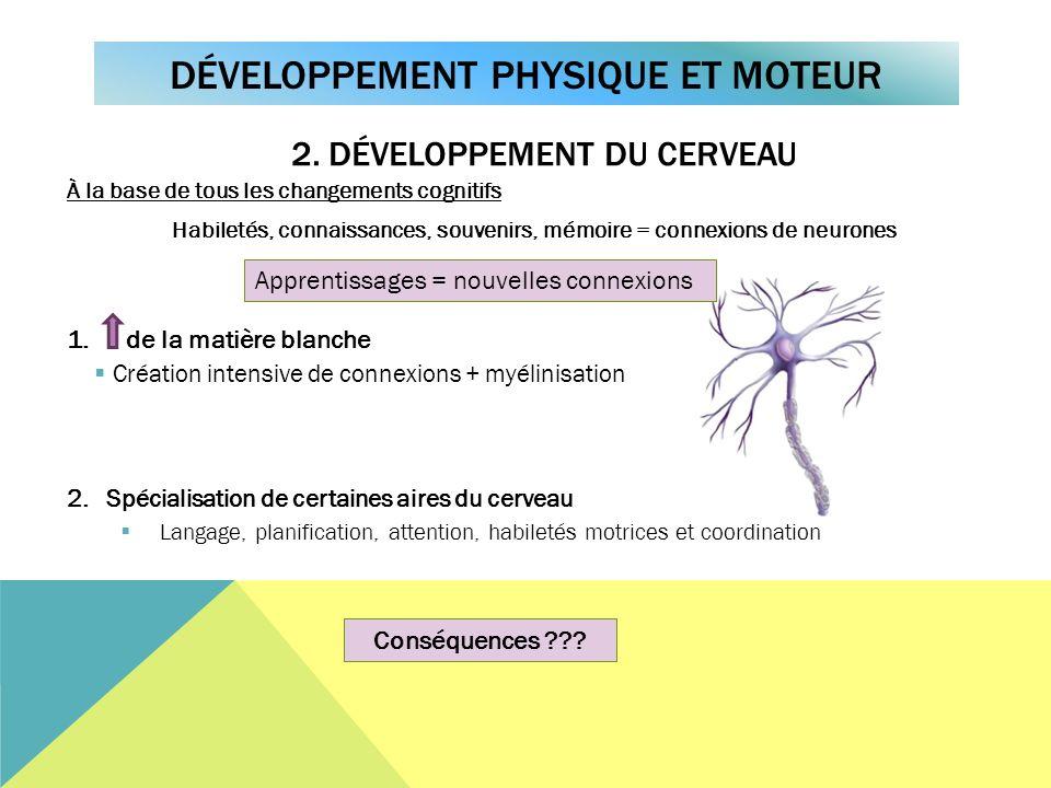 À la base de tous les changements cognitifs Habiletés, connaissances, souvenirs, mémoire = connexions de neurones 1. de la matière blanche Création in