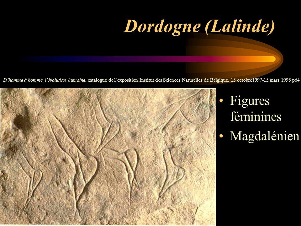 Dordogne (Lalinde) Figures féminines Magdalénien Dhomme à homme, lévolution humaine, catalogue de lexposition Institut des Sciences Naturelles de Belg