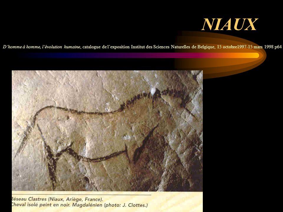 NIAUX Dhomme à homme, lévolution humaine, catalogue de lexposition Institut des Sciences Naturelles de Belgique, 15 octobre1997-15 mars 1998 p64