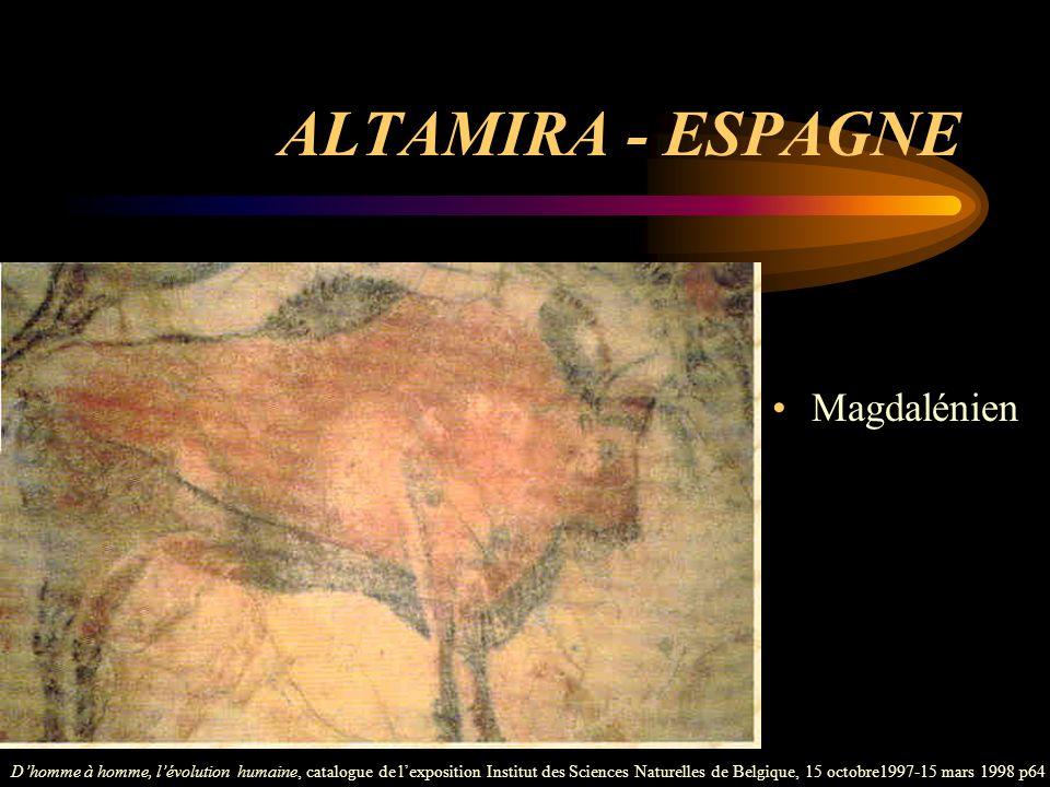 ALTAMIRA - ESPAGNE Magdalénien Dhomme à homme, lévolution humaine, catalogue de lexposition Institut des Sciences Naturelles de Belgique, 15 octobre19