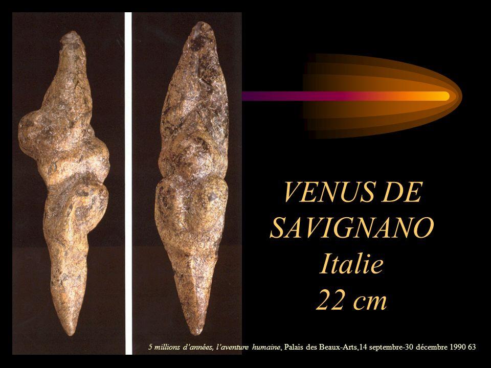 VENUS DE SAVIGNANO Italie 22 cm 5 millions dannées, laventure humaine, Palais des Beaux-Arts,14 septembre-30 décembre 1990 63