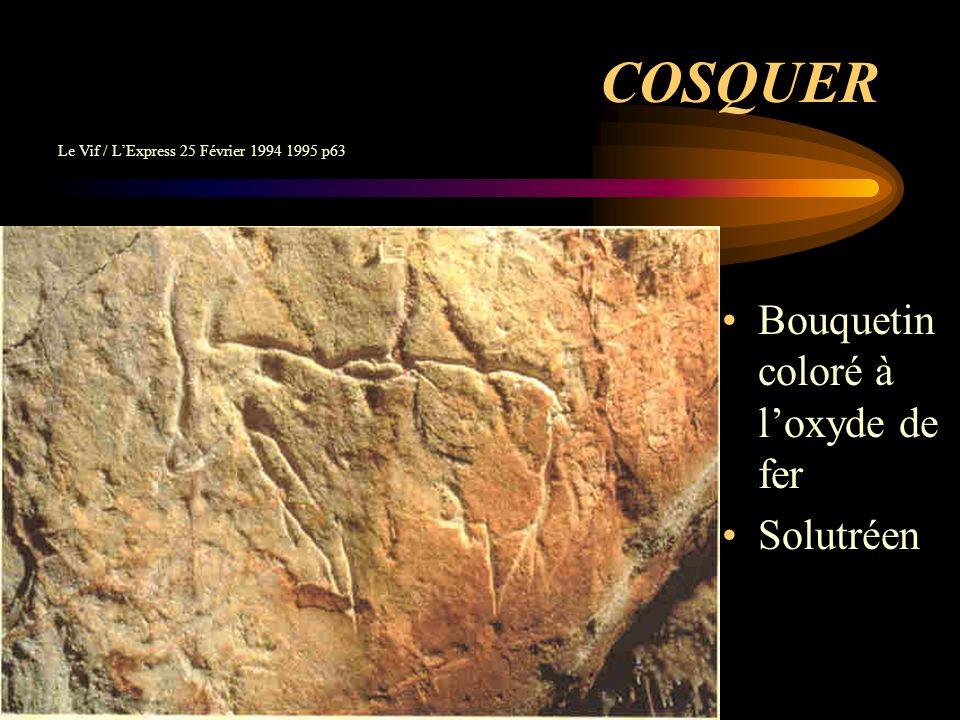 Cosquer Draperie des mains noires 27.000 ans Le Vif / LExpress 25 Février 1994 1995 p56