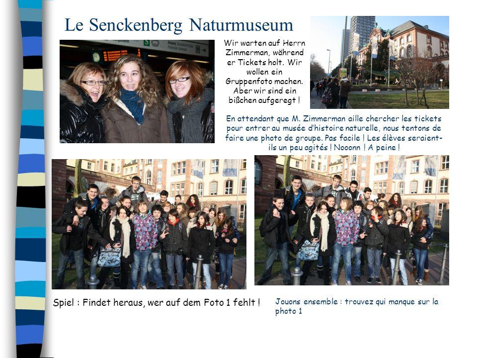 Le Senckenberg Naturmuseum En attendant que M. Zimmerman aille chercher les tickets pour entrer au musée dhistoire naturelle, nous tentons de faire un