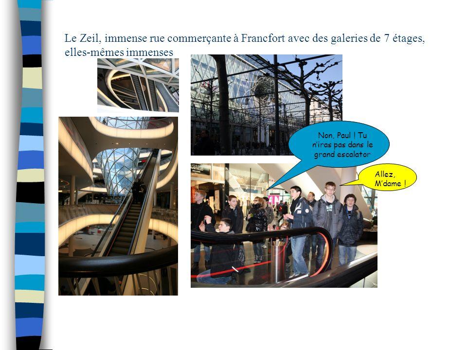 Le Zeil, immense rue commerçante à Francfort avec des galeries de 7 étages, elles-mêmes immenses Non, Paul ! Tu niras pas dans le grand escalator Alle