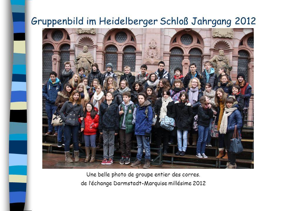 Une belle photo de groupe entier des corres. de léchange Darmstadt-Marquise millésime 2012 Gruppenbild im Heidelberger Schloß Jahrgang 2012