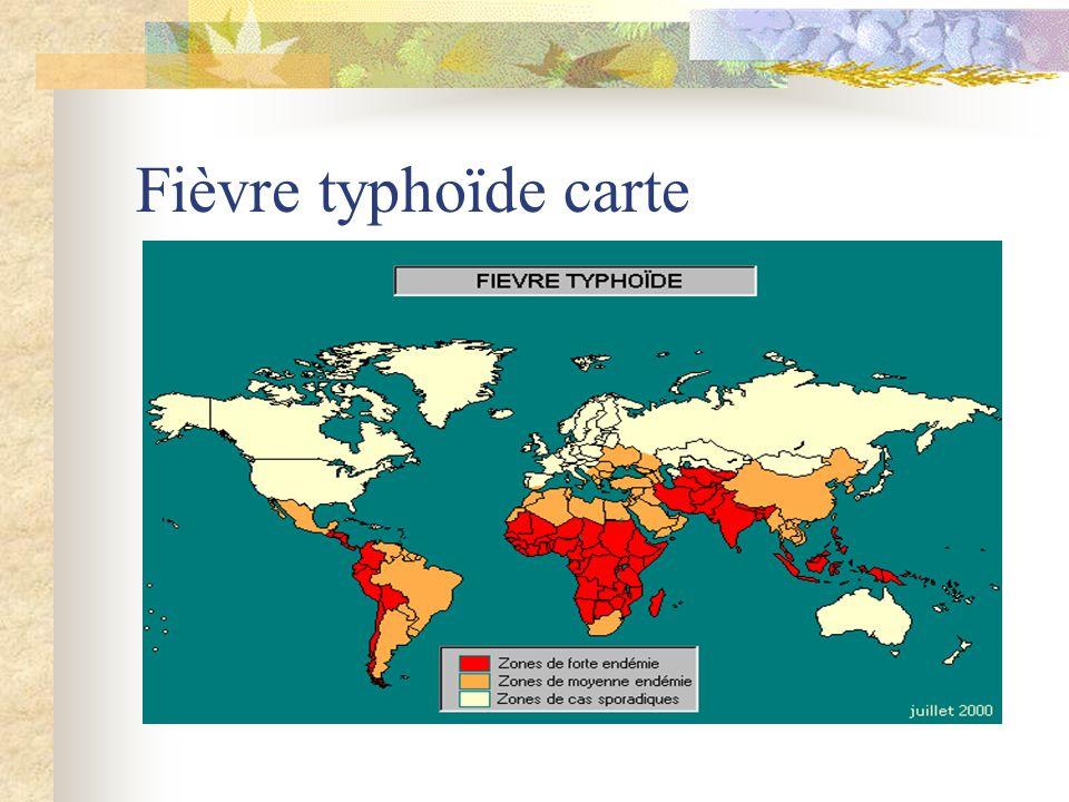 Fièvre typhoïde carte