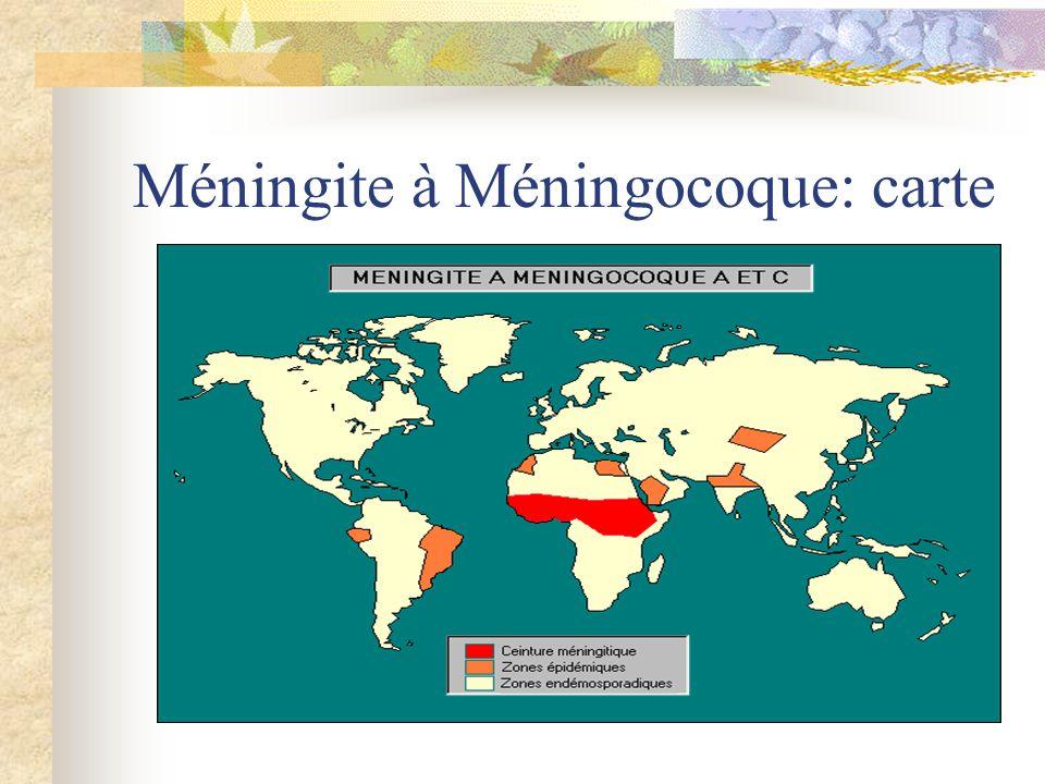 Méningite à Méningocoque: carte