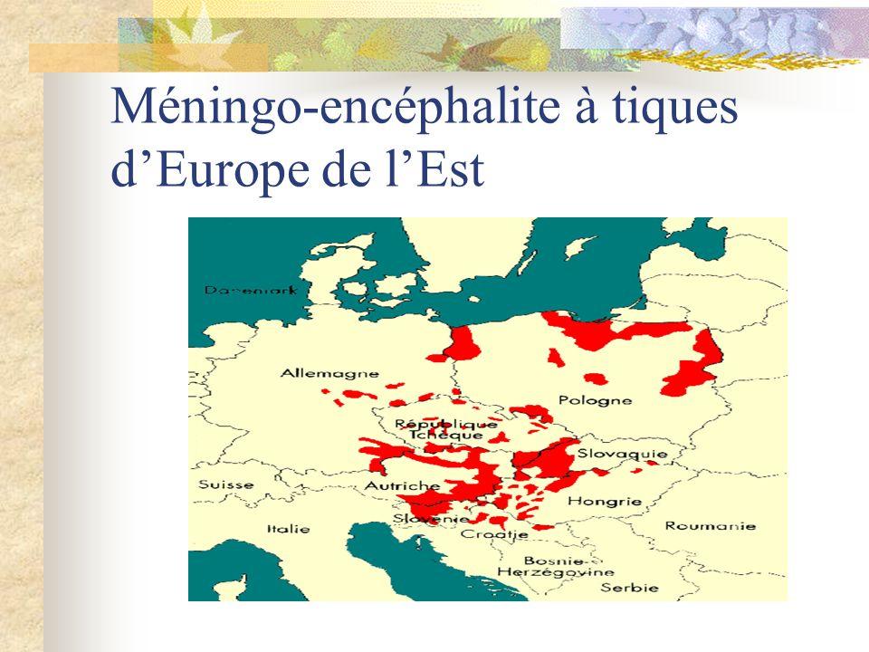 Méningo-encéphalite à tiques dEurope de lEst