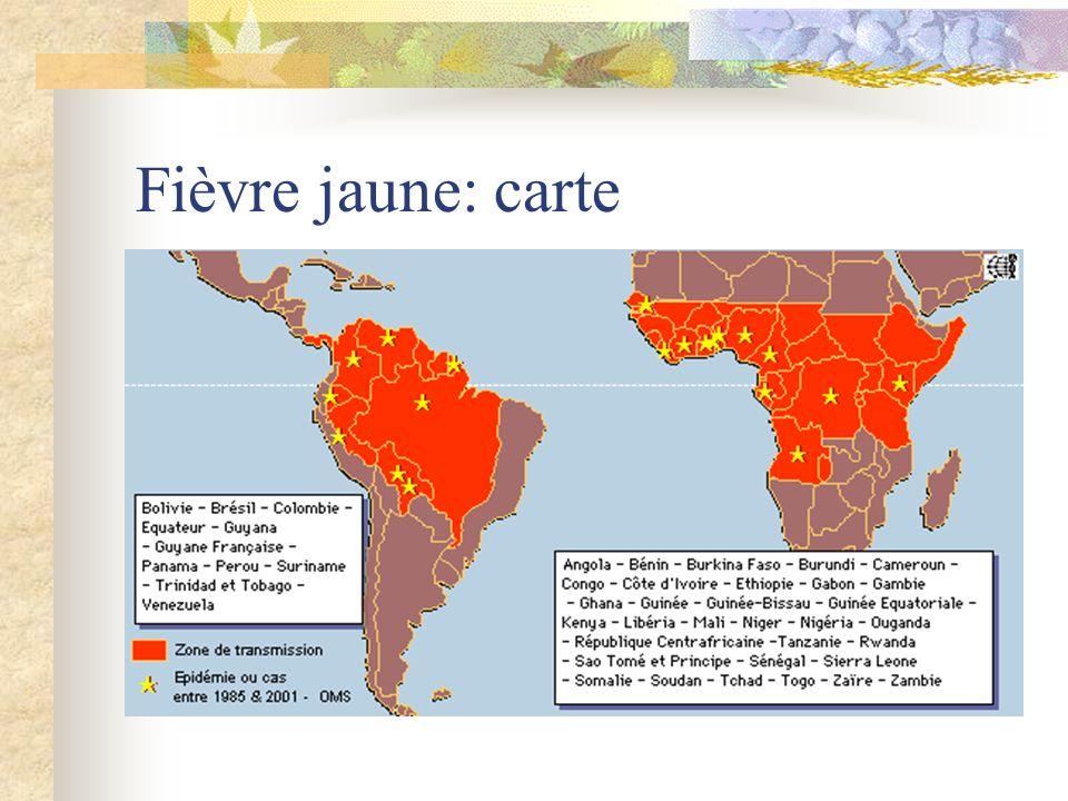 Fièvre jaune : STAMARIL En Centre de vaccination internationale Primo-vaccination: 10 jours avant le voyage au moins, rappel tous les 10 ans.