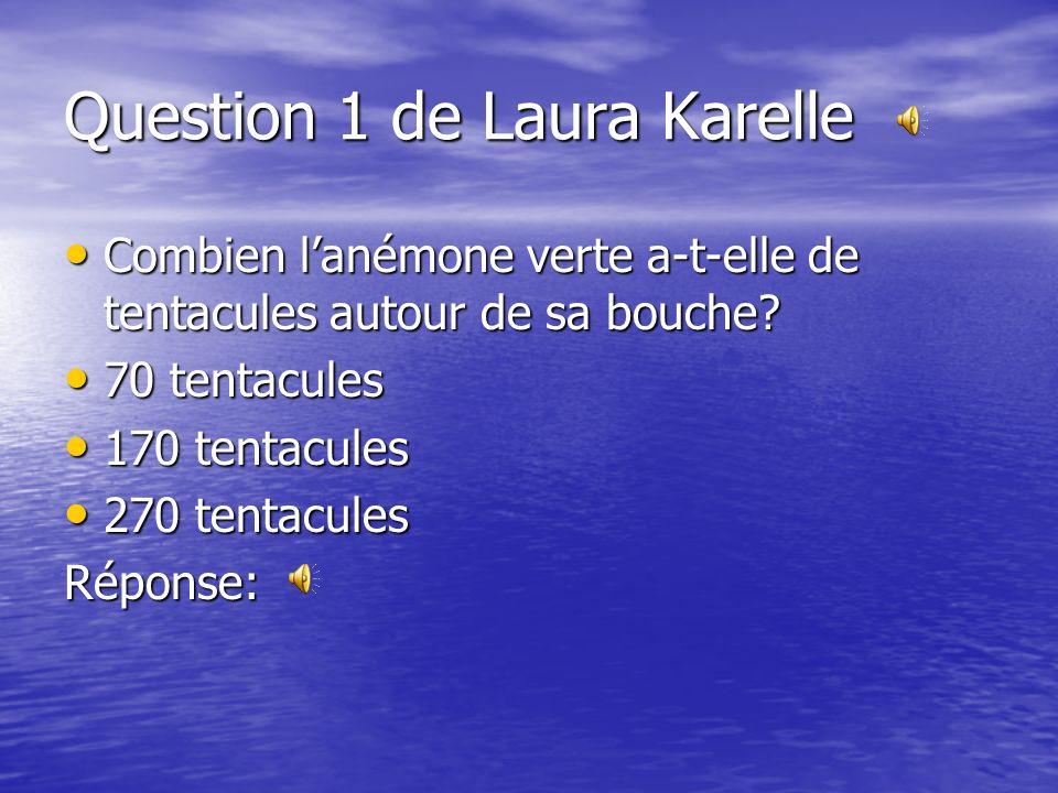Question 1 de Laura Karelle Combien lanémone verte a-t-elle de tentacules autour de sa bouche.
