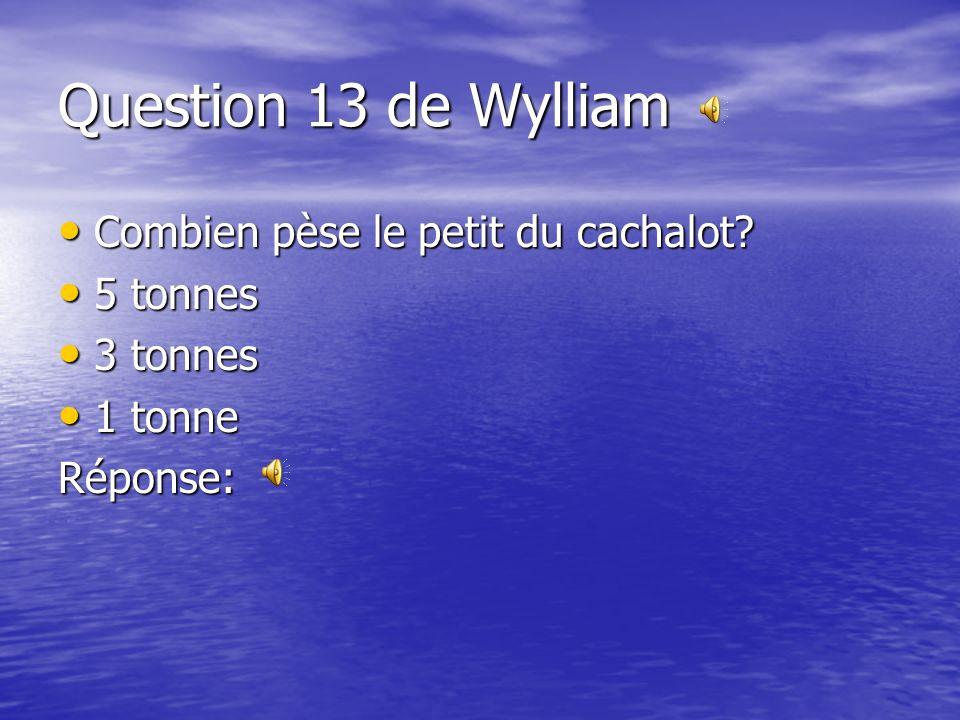 Question 12 de Claudelle Pour quelle raison voulons-nous attraper la rascasse volante? Pour quelle raison voulons-nous attraper la rascasse volante? P
