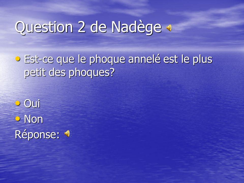 Question 2 de Nadège Est-ce que le phoque annelé est le plus petit des phoques.