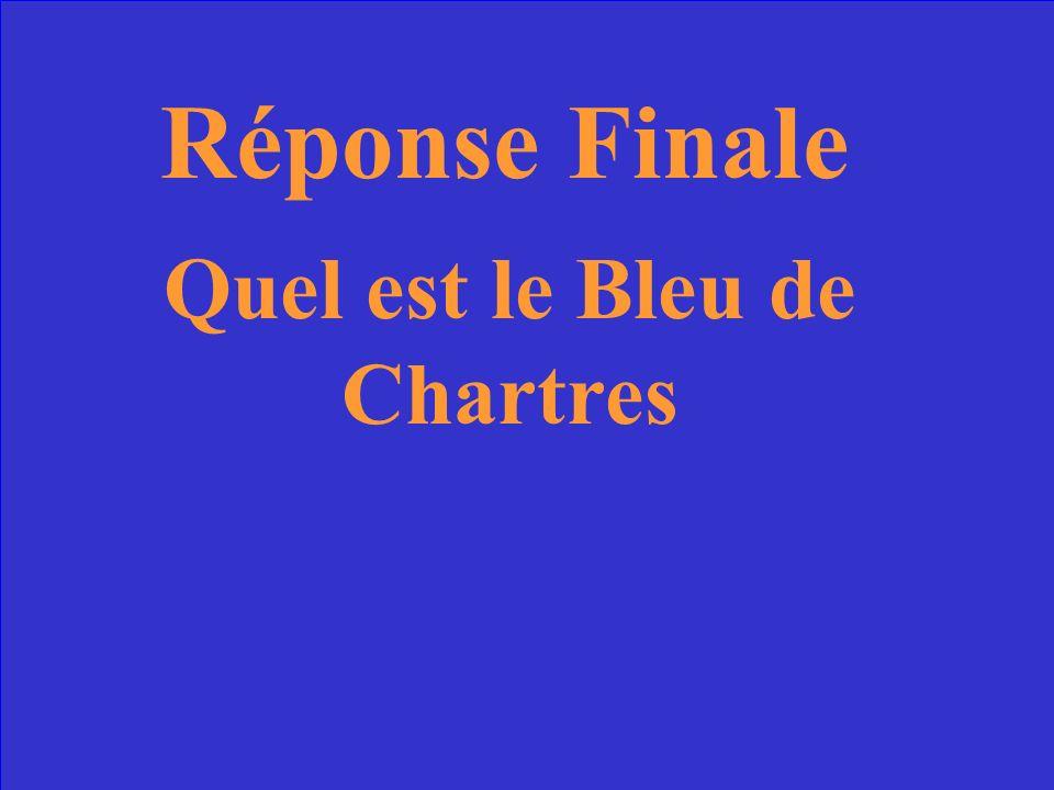 55 Question Finale La chose la plus célèbre dans le vitraux de la Vierge à Chartres