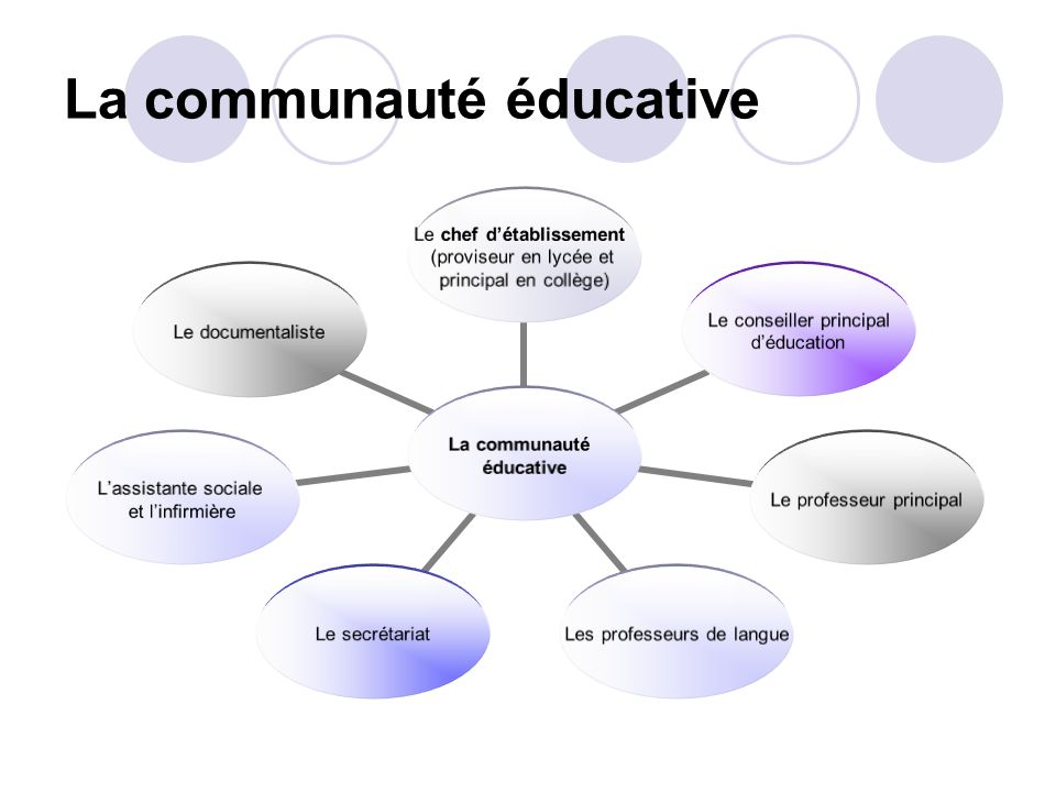 La communauté éducative La communauté éducative Le chef détablissement (proviseur en lycée et principal en collège) Le conseiller principal déducation