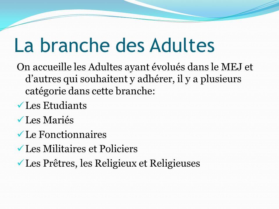 La branche des Adultes On accueille les Adultes ayant évolués dans le MEJ et dautres qui souhaitent y adhérer, il y a plusieurs catégorie dans cette b