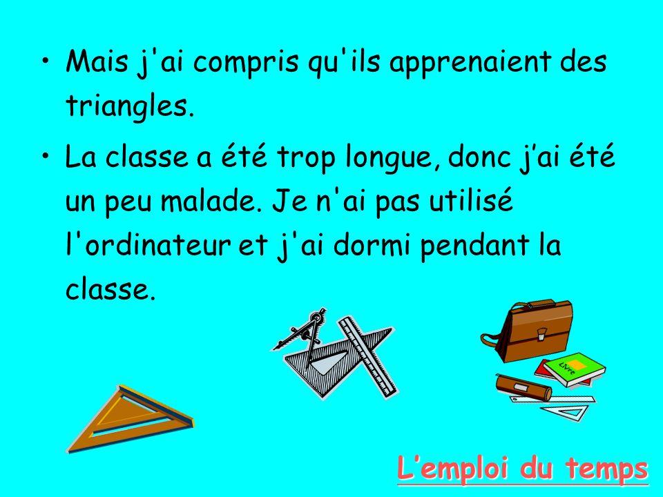 Mais j'ai compris qu'ils apprenaient des triangles. La classe a été trop longue, donc jai été un peu malade. Je n'ai pas utilisé l'ordinateur et j'ai