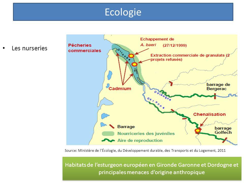 Les nurseries Habitats de lesturgeon européen en Gironde Garonne et Dordogne et principales menaces dorigine anthropique Ecologie Source: Ministère de lÉcologie, du Développement durable, des Transports et du Logement, 2011