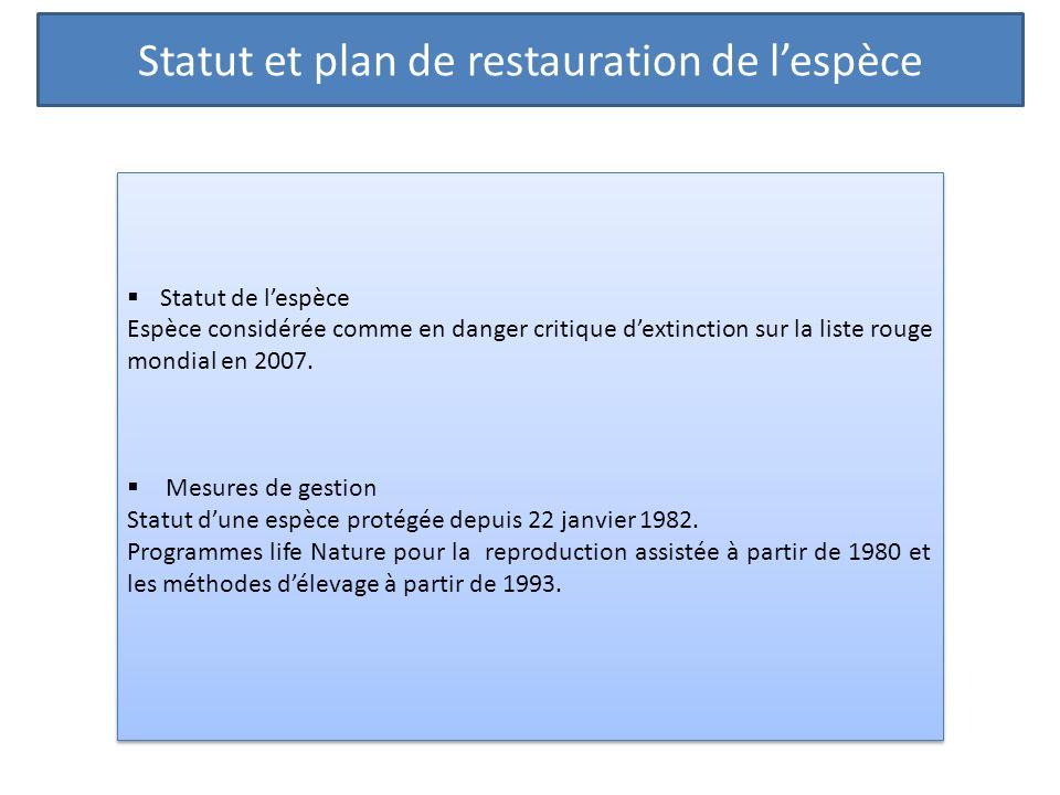 Statut et plan de restauration de lespèce Statut de lespèce Espèce considérée comme en danger critique dextinction sur la liste rouge mondial en 2007.