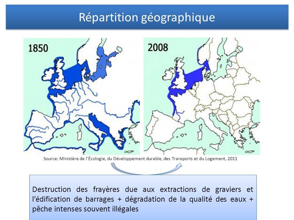 Répartition géographique Destruction des frayères due aux extractions de graviers et lédification de barrages + dégradation de la qualité des eaux + p
