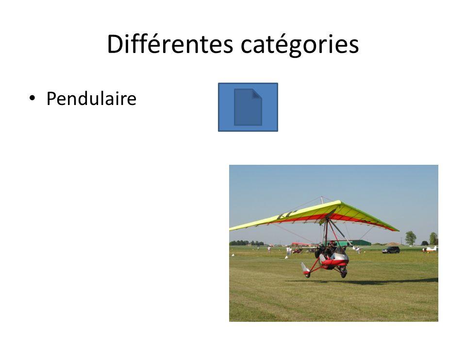 Différentes catégories Pendulaire