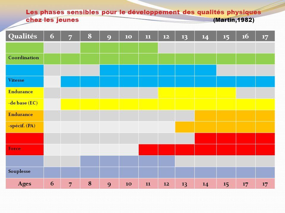 Les phases sensibles pour le développement des qualités physiques chez les jeunes (Martin,1982) Qualités67891011121314151617 Coordination Vitesse Endurance -de base (EC) Endurance -spécif.