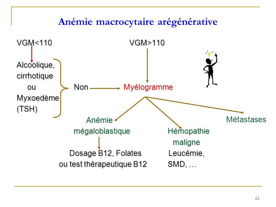 Anémie macrocytaire arégénérative VGM 110 Alcoolique,cirrhotique ou Non Myélogramme ou Non MyélogrammeMyxoedème(TSH) Anémie Anémie mégaloblastique Hém