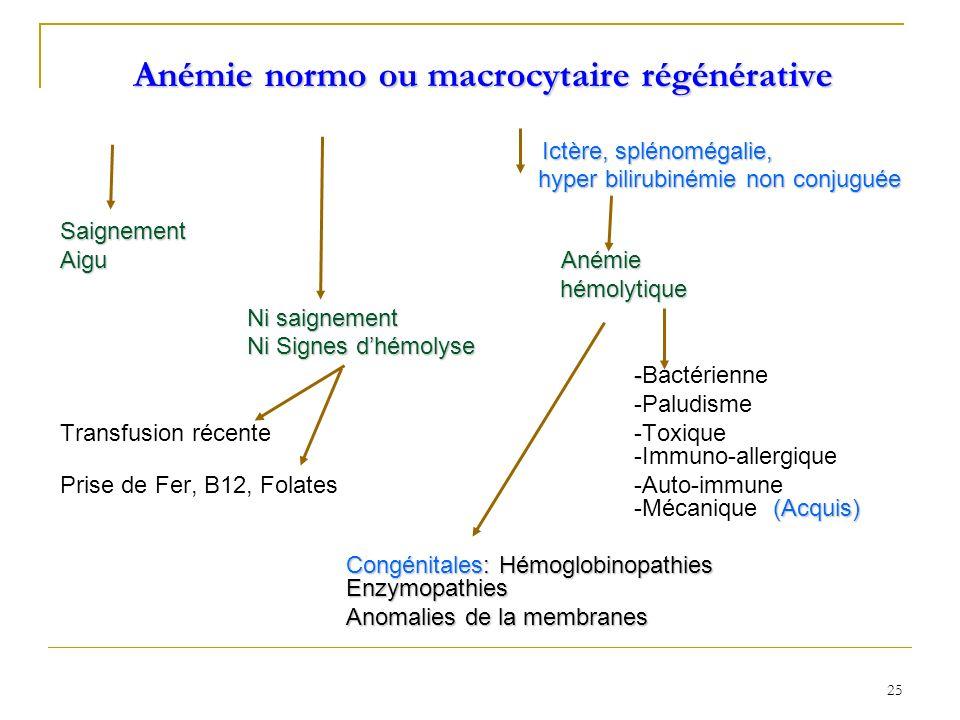 Anémie normo ou macrocytaire régénérative Ictère, splénomégalie, Ictère, splénomégalie, hyper bilirubinémie non conjuguée hyper bilirubinémie non conj