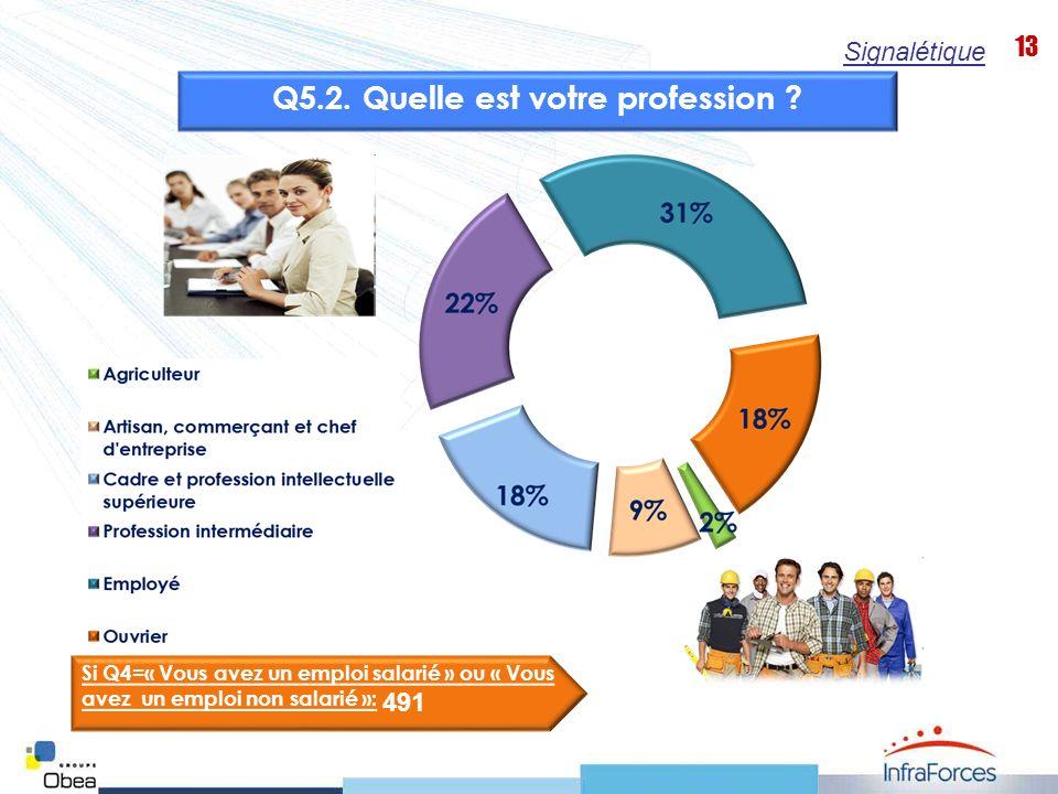 13 Signalétique Q5.2. Quelle est votre profession ? Si Q4=« Vous avez un emploi salarié » ou « Vous avez un emploi non salarié »: 491