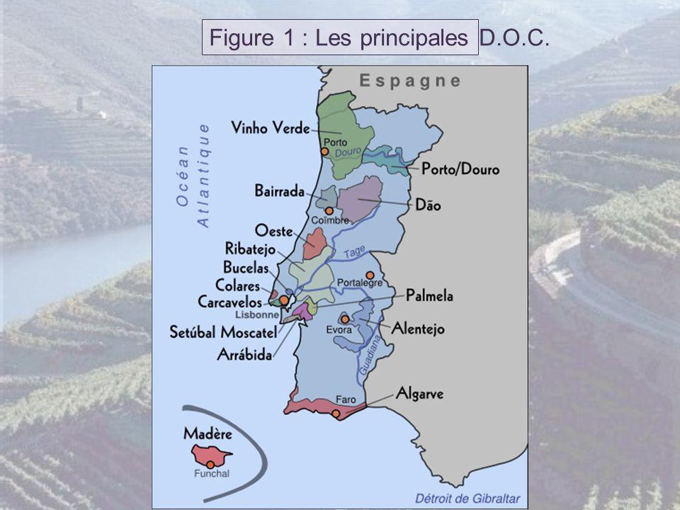 Figure 1 : Les principales D.O.C.