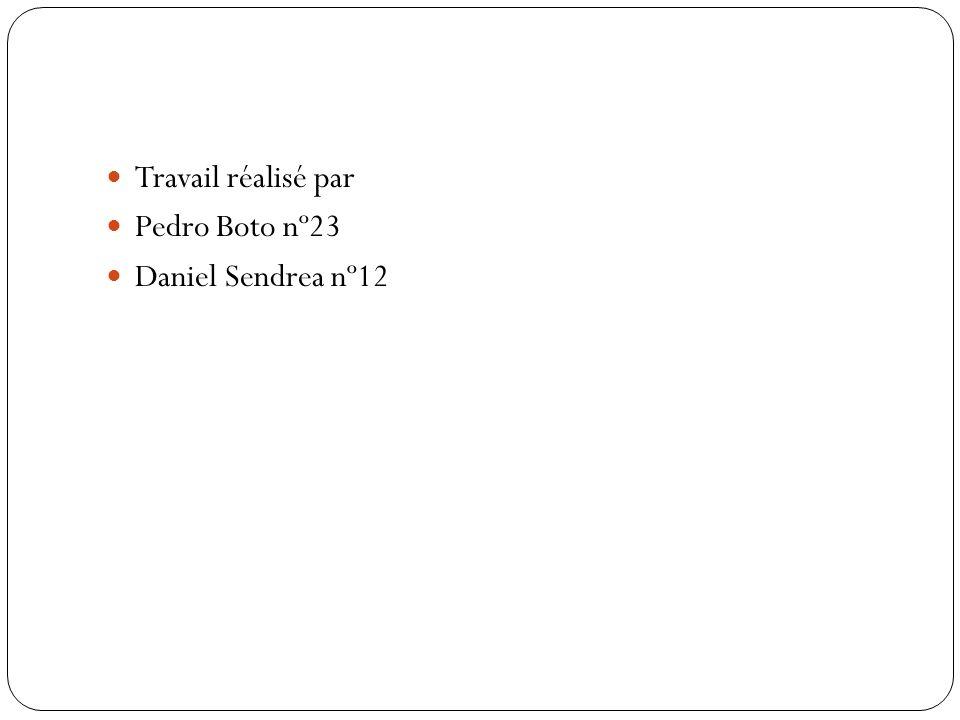 Travail réalisé par Pedro Boto nº23 Daniel Sendrea nº12