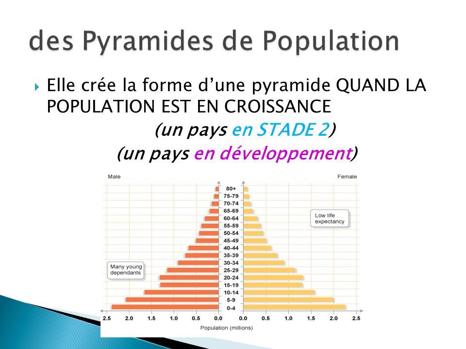 Elle crée la forme dune pyramide QUAND LA POPULATION EST EN CROISSANCE (un pays en STADE 2) (un pays en développement)