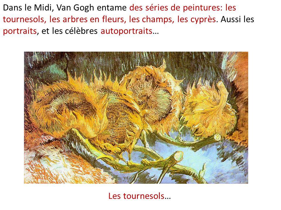 Les tournesols… Dans le Midi, Van Gogh entame des séries de peintures: les tournesols, les arbres en fleurs, les champs, les cyprès. Aussi les portrai