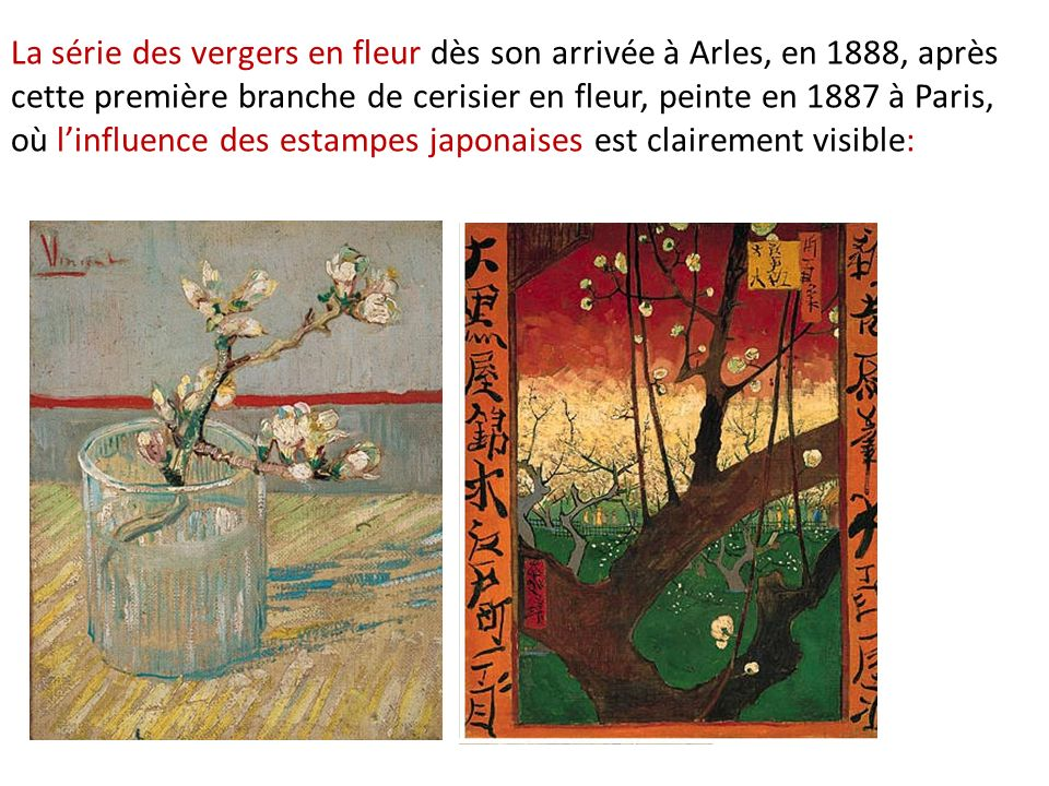 La série des vergers en fleur dès son arrivée à Arles, en 1888, après cette première branche de cerisier en fleur, peinte en 1887 à Paris, où linfluence des estampes japonaises est clairement visible: