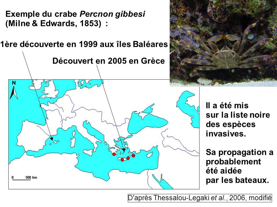 Exemple du crabe Percnon gibbesi (Milne & Edwards, 1853) : 1ère découverte en 1999 aux îles Baléares Découvert en 2005 en Grèce Il a été mis sur la li