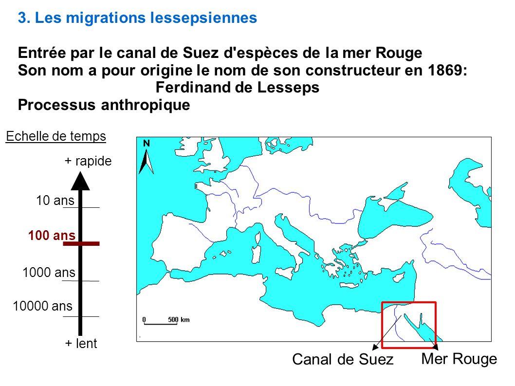 3. Les migrations lessepsiennes Entrée par le canal de Suez d'espèces de la mer Rouge Son nom a pour origine le nom de son constructeur en 1869: Ferdi