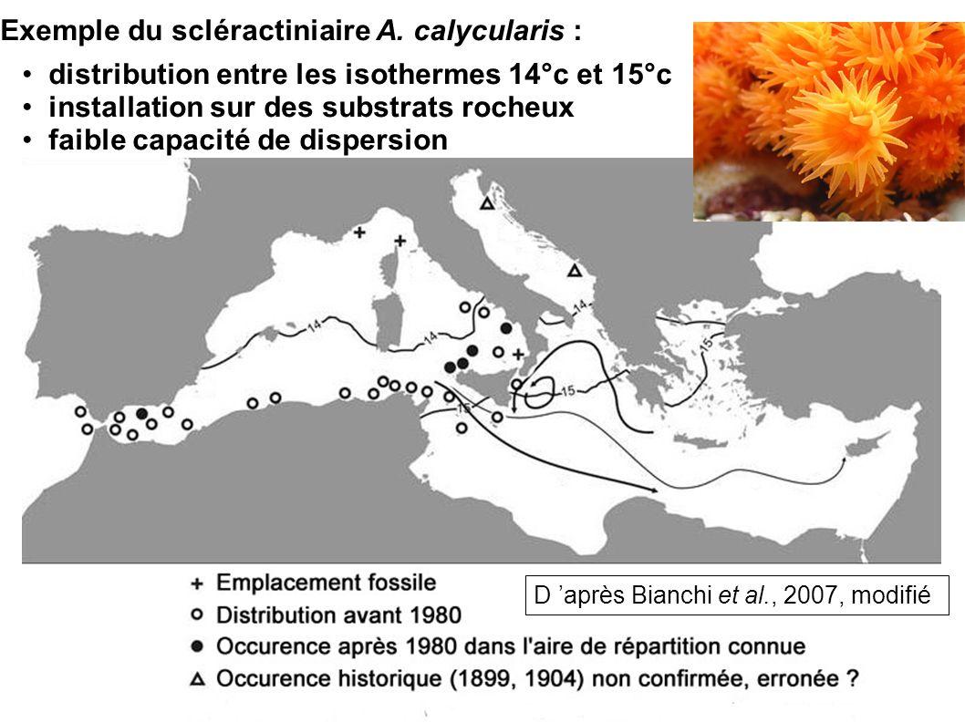 distribution entre les isothermes 14°c et 15°c installation sur des substrats rocheux faible capacité de dispersion Exemple du scléractiniaire A. caly