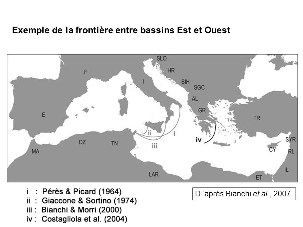 Exemple de la frontière entre bassins Est et Ouest D après Bianchi et al., 2007
