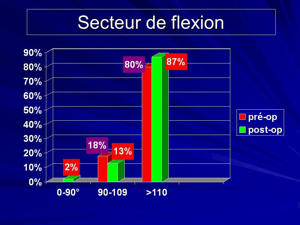 Secteur de flexion